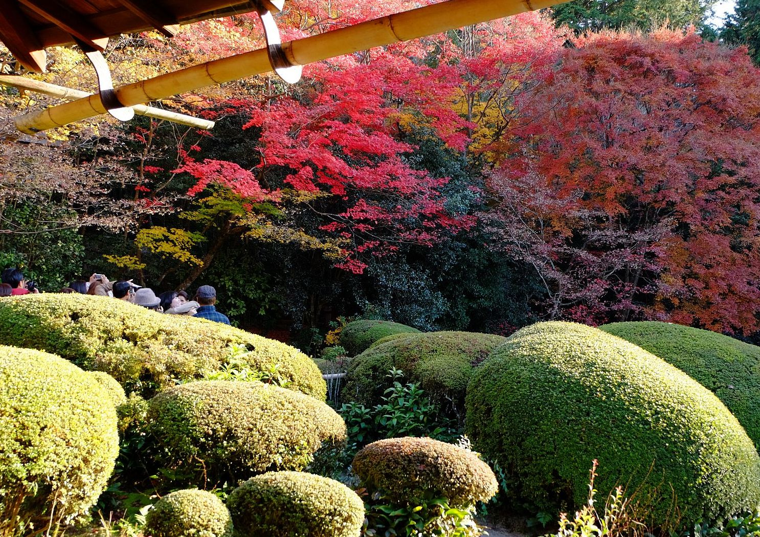 Kyoto1_2